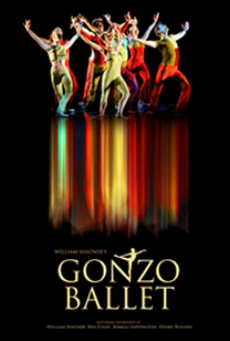 Gonzo Ballet small poster2